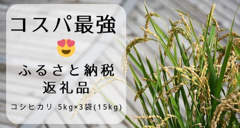 【コスパ最強!ふるさと納税返礼品】令和元年三重県産コシヒカリ 6kg×2袋(12kg)